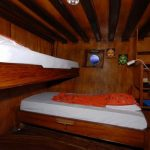 Moana-cruise-boat-dive-cruise-indonesia-large-cabin